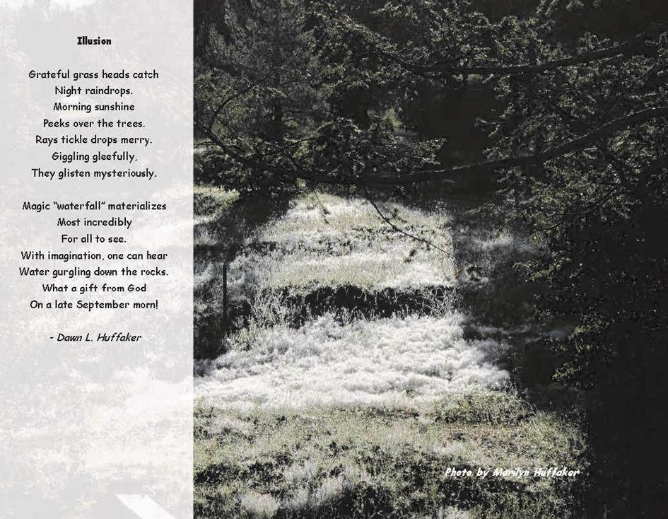 Nature through Poetry 2014 Standard-Finall-Illusion