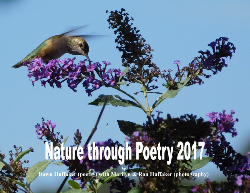 nature-through-poetry-2017-standard-final-front-cover-hrw-f