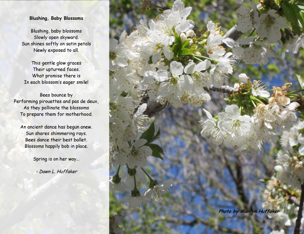 Nature through Poetry 2015 - March