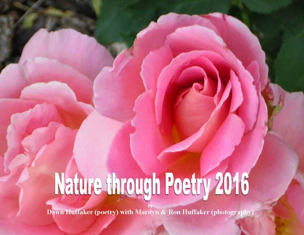 Nature through Poetry 2016 Standard-Final_Page_01